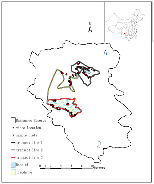 Winter diet and food selection of the Black-necked Crane