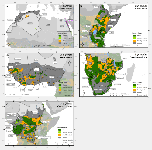 small resolution of leopard range with presence records across africa