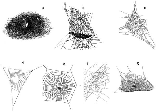 Deer herbivory reduces web-building spider abundance by