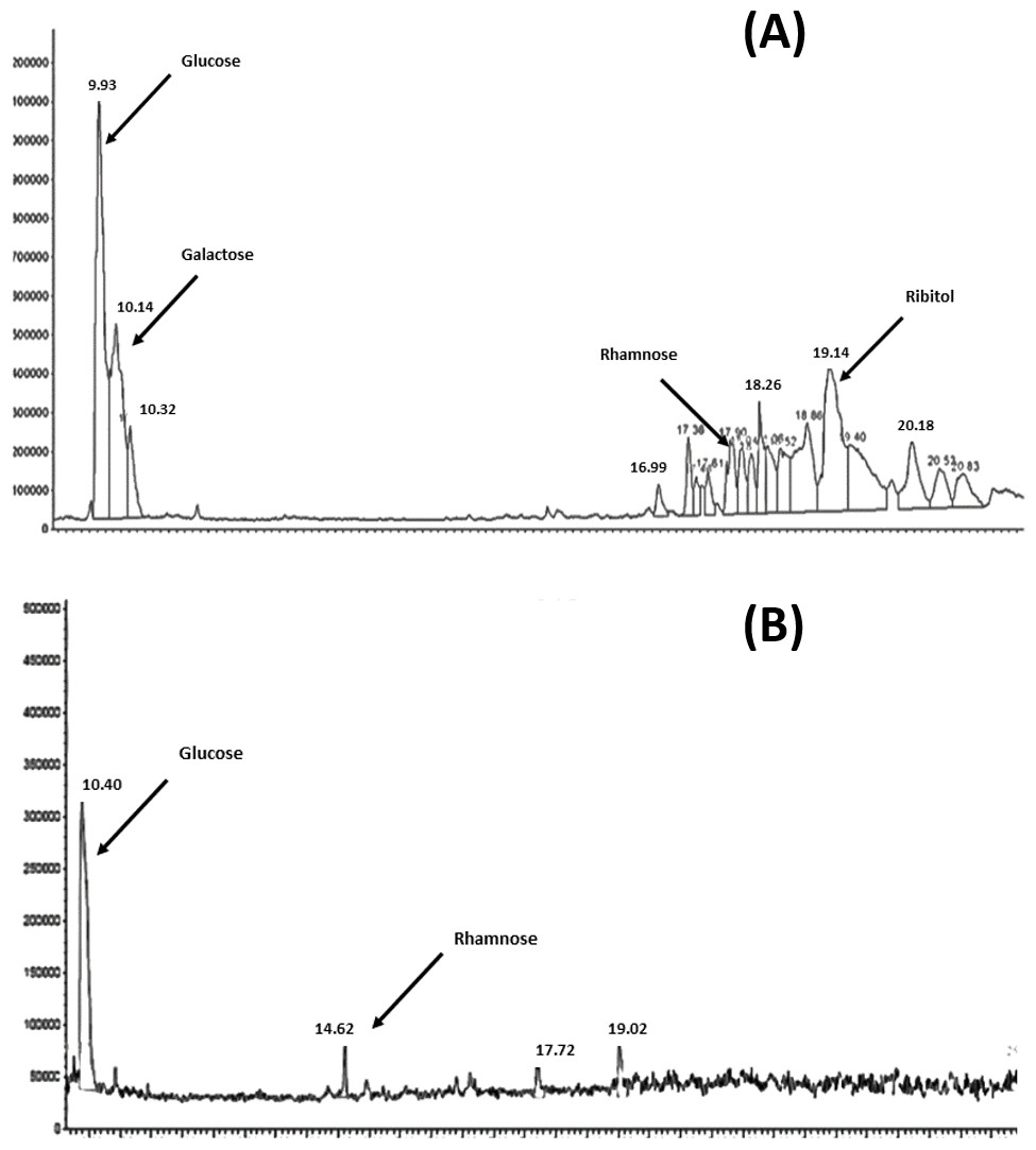 Development and evaluation of a novel vaccine against