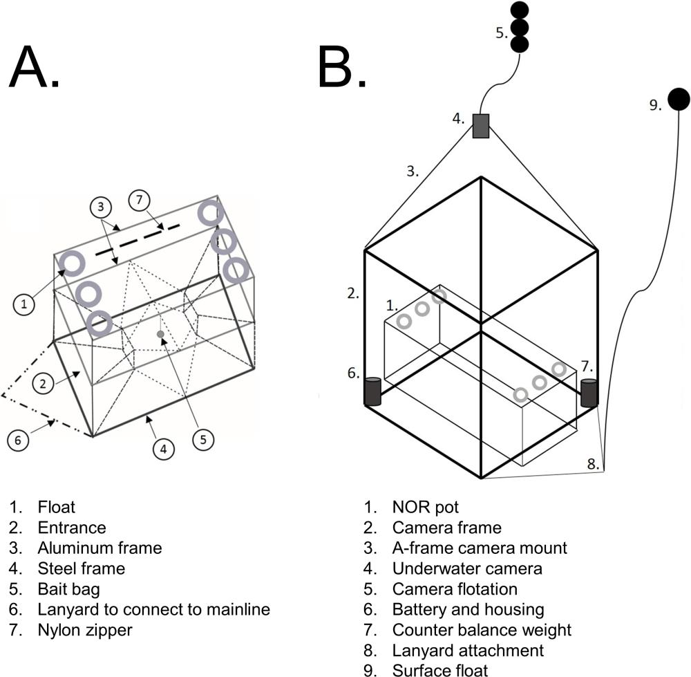 medium resolution of image result for logic gate diagram creator