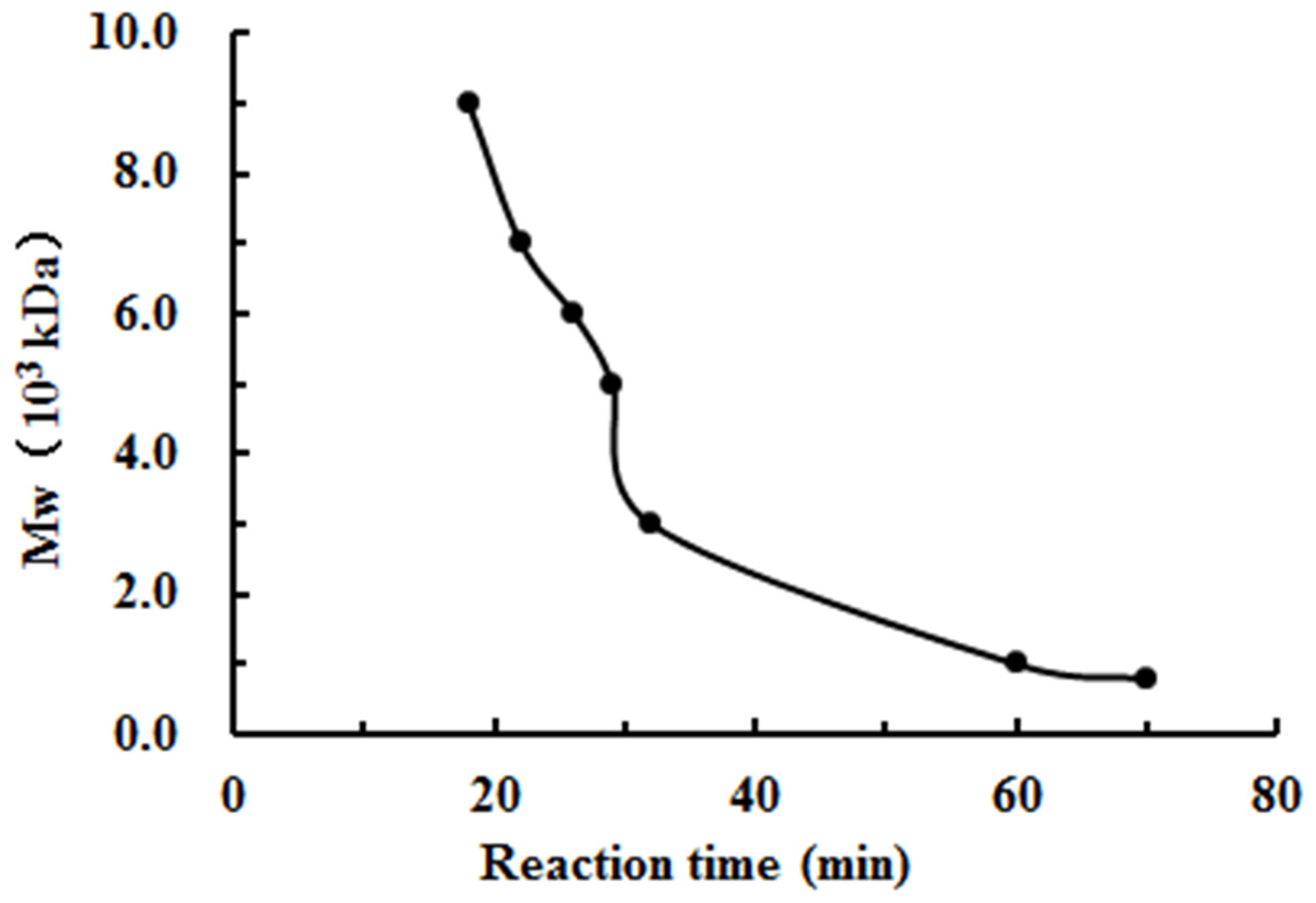 Effect of the molecular weight of water-soluble chitosan