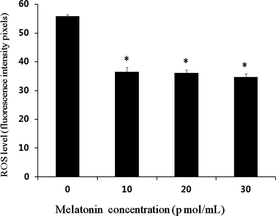 The Effects Of Melatonin On Bovine Uniparental Embryos