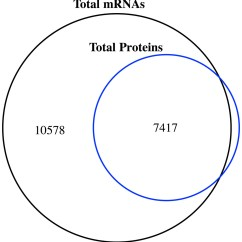 Venn Diagram Of The Number System John Deere 1020 Wiring Shot Gun Proteome And Transcriptome Mapping Jujube