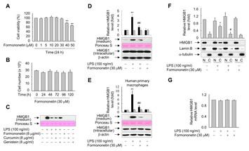 Formononetin inhibits lipopolysaccharide-induced release