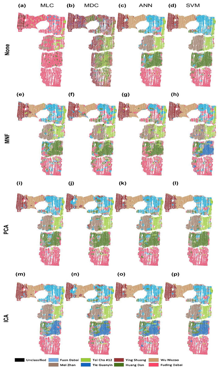 hight resolution of classification of tea cultivars in the study region with image pre processing and classification