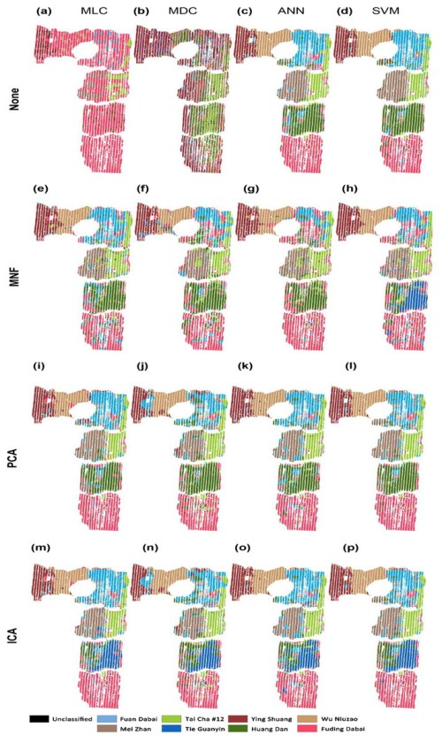 small resolution of classification of tea cultivars in the study region with image pre processing and classification