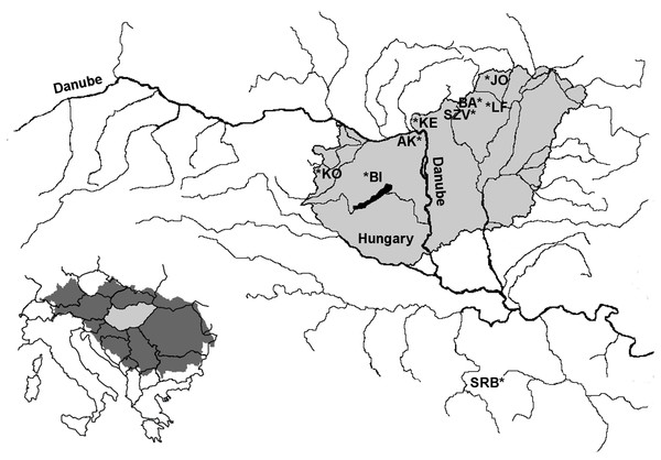 The genetic status of the Hungarian brown trout