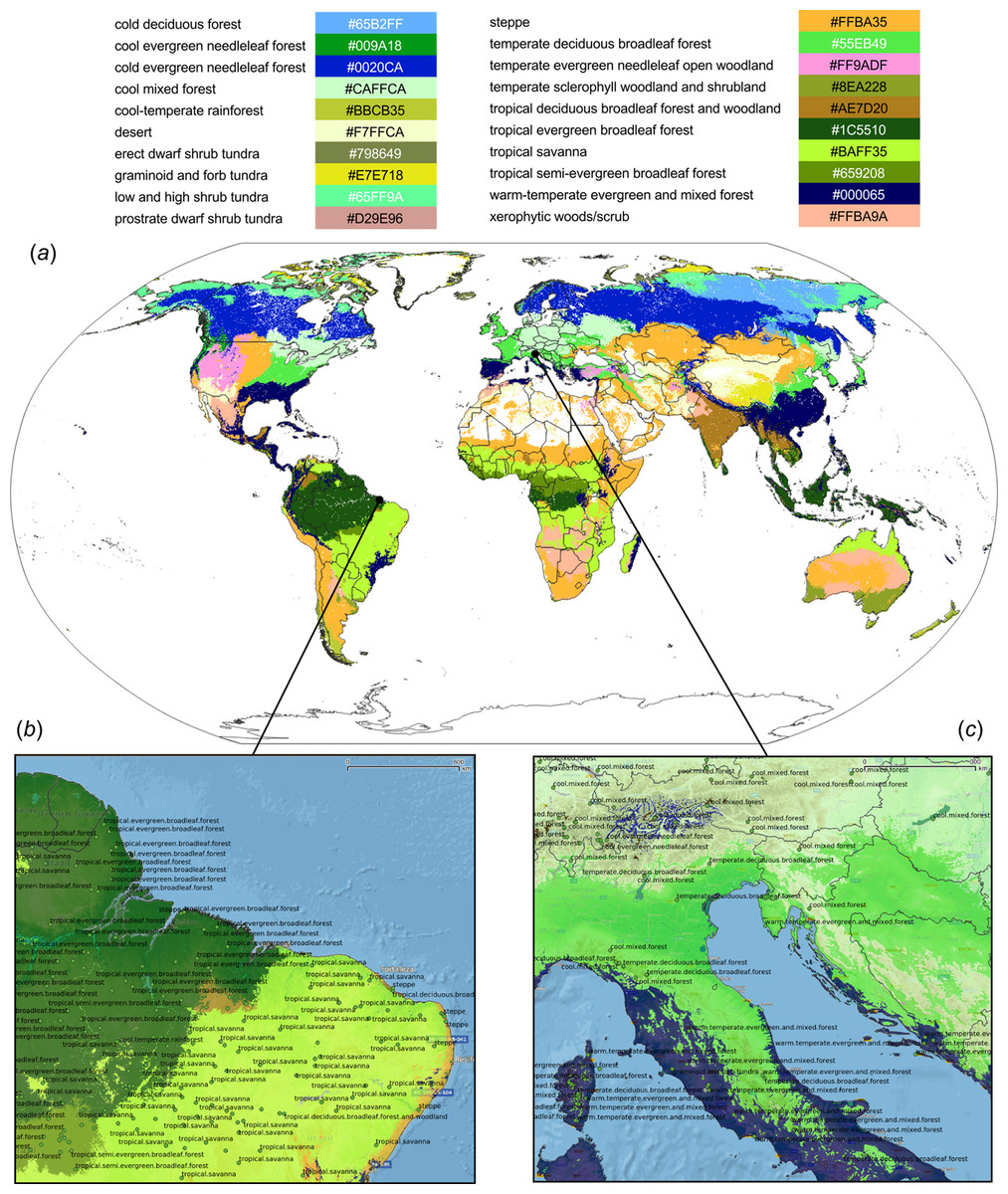 Ecosystem of the rain forest christina jackson environmental sciences ecosystems rainforest by: Global Mapping Of Potential Natural Vegetation An Assessment Of Machine Learning Algorithms For Estimating Land Potential Peerj