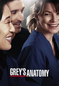 Grey's Anatomy Saison 15 Episode 22 Streaming Vf : grey's, anatomy, saison, episode, streaming, Grey's, Anatomy, (TVShow, Time)