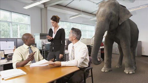 three coworkers meeting around a table with an elephant standing behind them