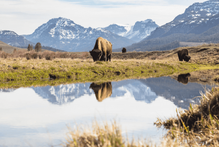 How to See the National Parks by Private Jet
