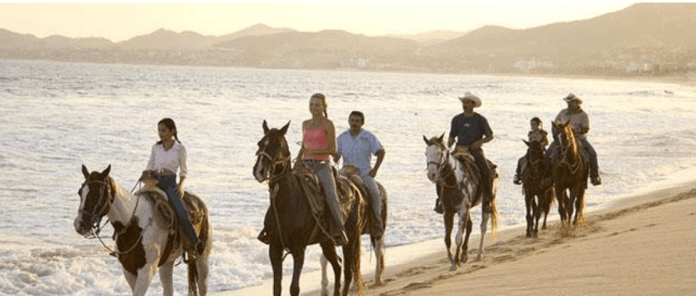 What to Do During Your Bubble Vacation in Los Cabos