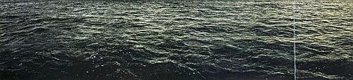 Seascape by Doug + Mike Starn