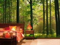 Autumn Forest, 8 Sheet Woodland Wall Mural - Buy Online