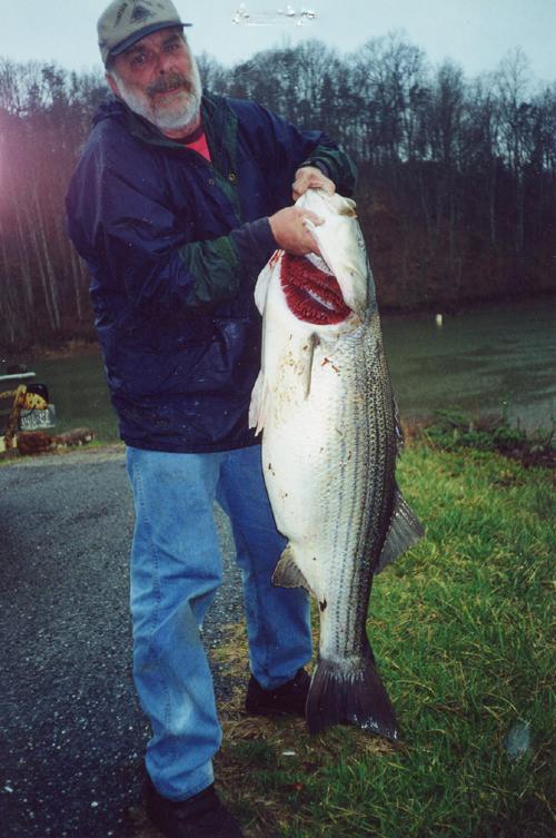 Virginia State Record Fish Vdgif