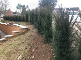Reading landscaping and planting services.