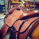 saddles-9