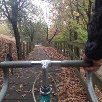 fotocycle [217] o Outono está no ar...