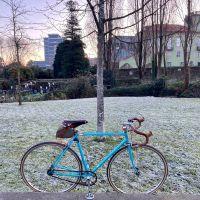 reciclando [46] ciclistas de inverno, uma raça rústica