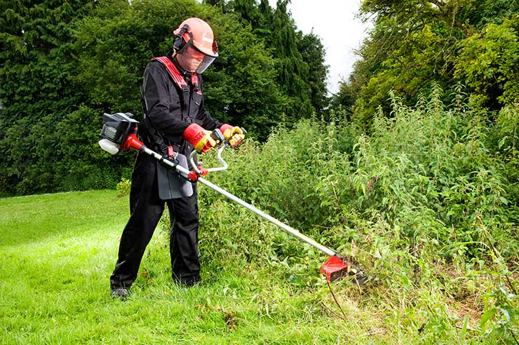 The Best Brush Cutter Gas and Electric Options  Epic