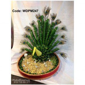 Code WDPM247