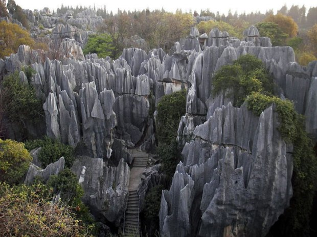 Stone-Forest-China20