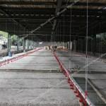 The Best Broiler Open House 3 Lantai Konstruksi Baja