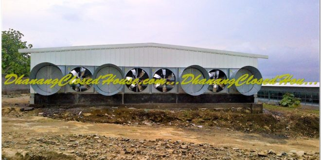 Keunggulan Model Kandang Closed House