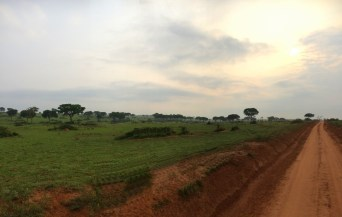 Glorious contrasts of red dirt and lush green lands,