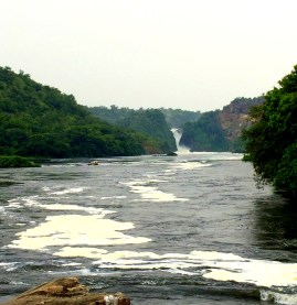 Murchison falls and the mighty river Nile,