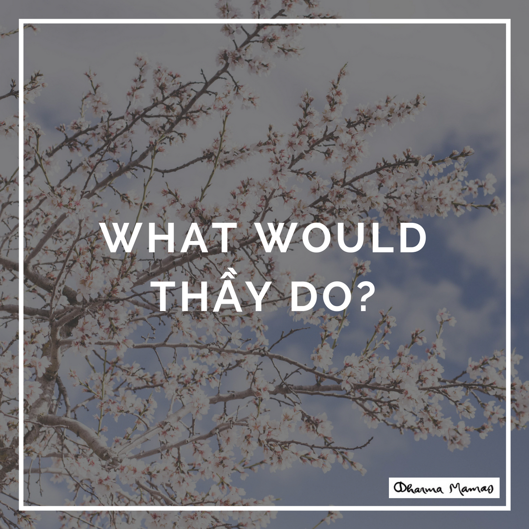 What Would Thầy Do?
