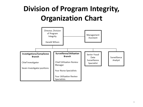 Division of Program Integrity (DPI) Organizational Chart