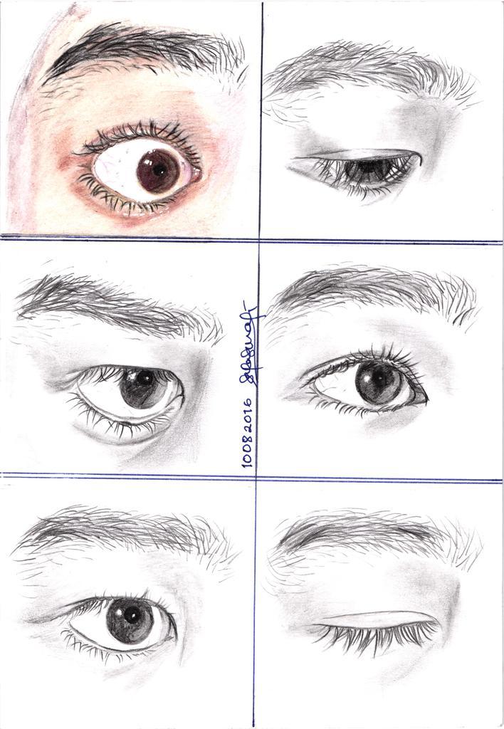 eye20study11082016092430_zpsltoxxl8b