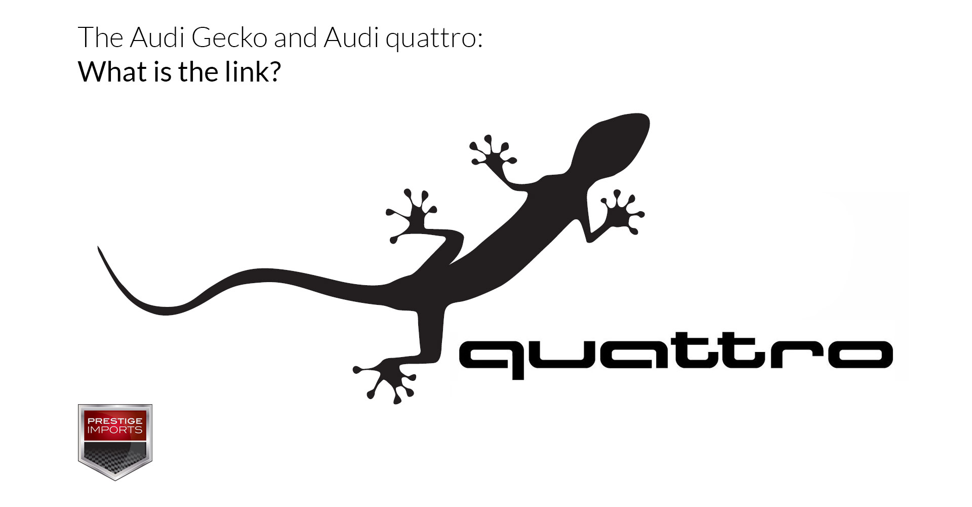 Audi gecko logo and Audi quattro: What is the link?