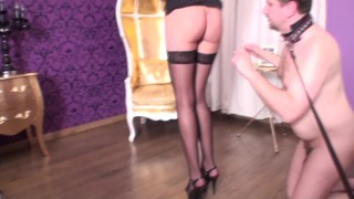 teasing fun for ruler couple and their slave