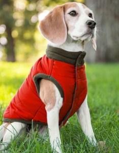 Eddie bauer other euc dog puffer vest  fleece also jackets  coats rh poshmark