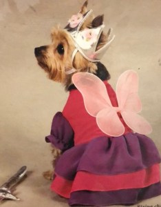 Fairy princess costume  dog zack  zoey also accessories rh poshmark