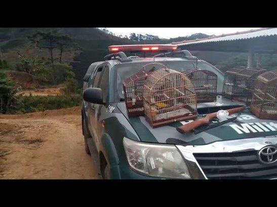 Polícia Ambiental apreende arma e aves silvestres em Muniz Freire