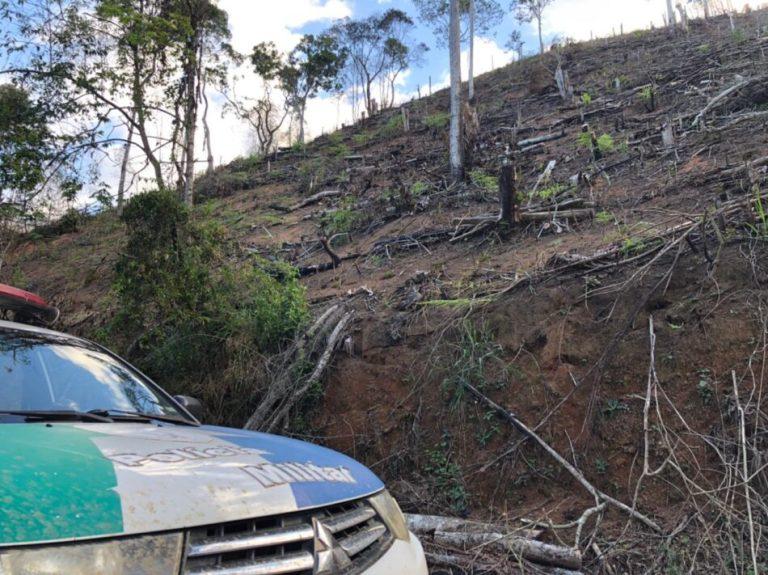 Polícia ambiental constata desmatamento no Caparaó
