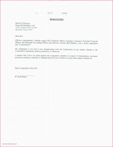 17 Power Of attorney Resignation Letter Template Samples