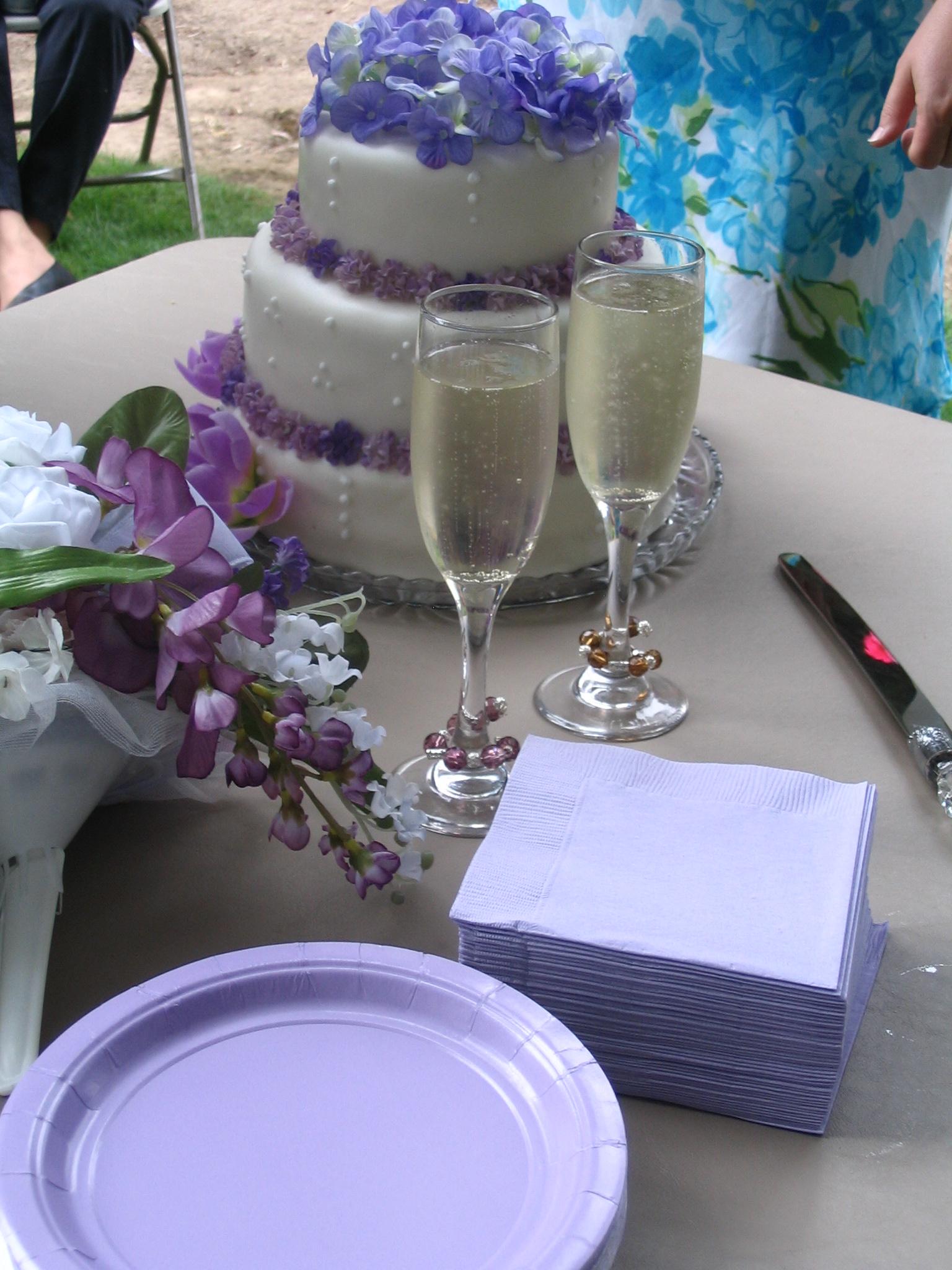(c)2009 Em at https://diabetesdietdialogue.wordpress.com Diabetic Wedding Advice 2022