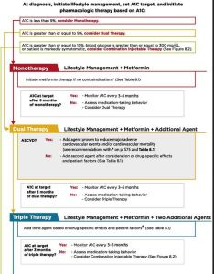 One page summary sheet on ada meds algorithm for treatment of type also management update diabetes education services rh diabetesed