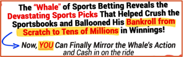 The_Sports-Betting_Whale_formula