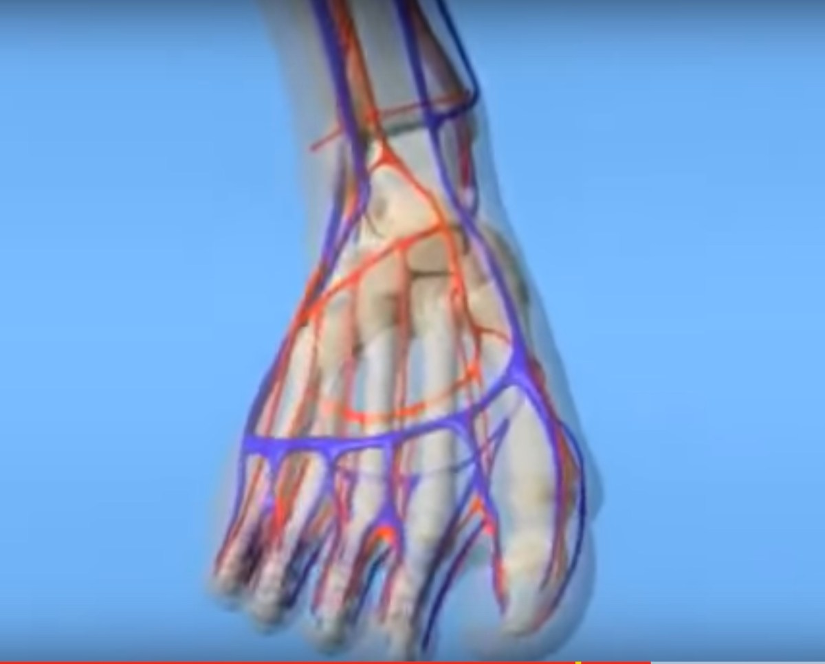 Diabetic Foot Video Series