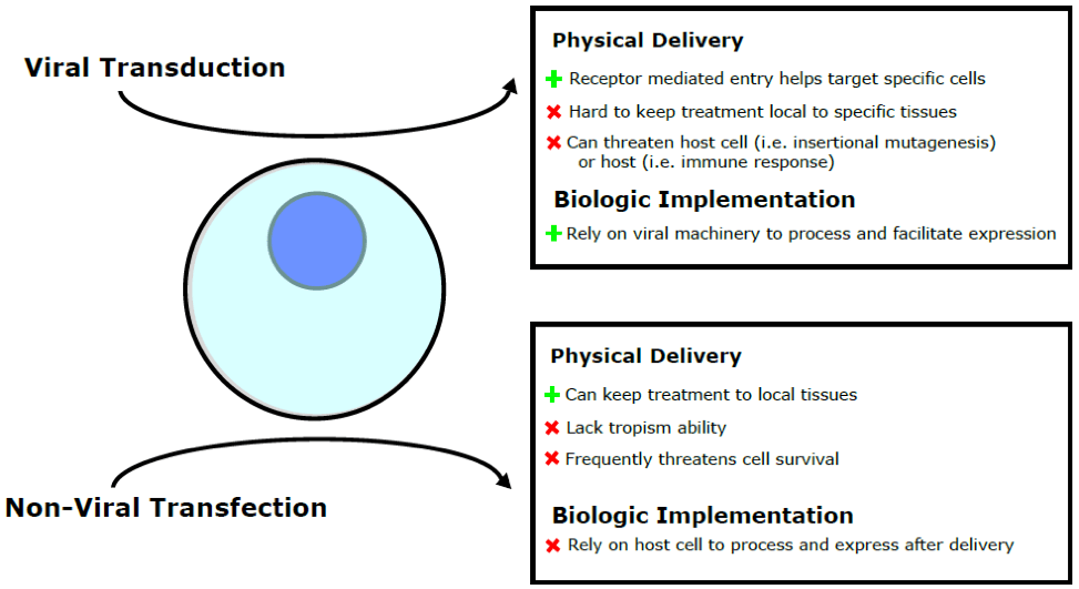 A Review of Genetic Engineering Biotechnologies for Enhanced Chronic Wound Healing
