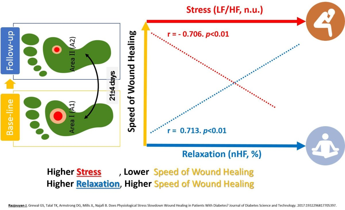Stress Slows Down Wound Healing in Diabetic Foot Ulcers: Study @BCM @UofAZResearch
