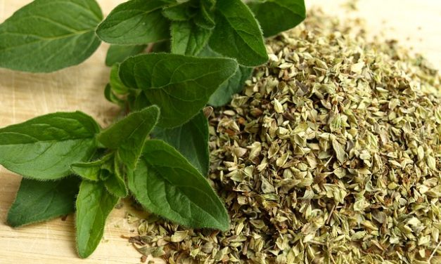 Culinary Herbs – Cleaning, Drying & Preparing