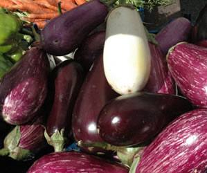 Learn About Eggplant