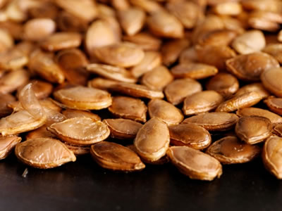 Roasted Pumpkin Seeds Recipe Photo - Diabetic Gourmet Magazine Recipes